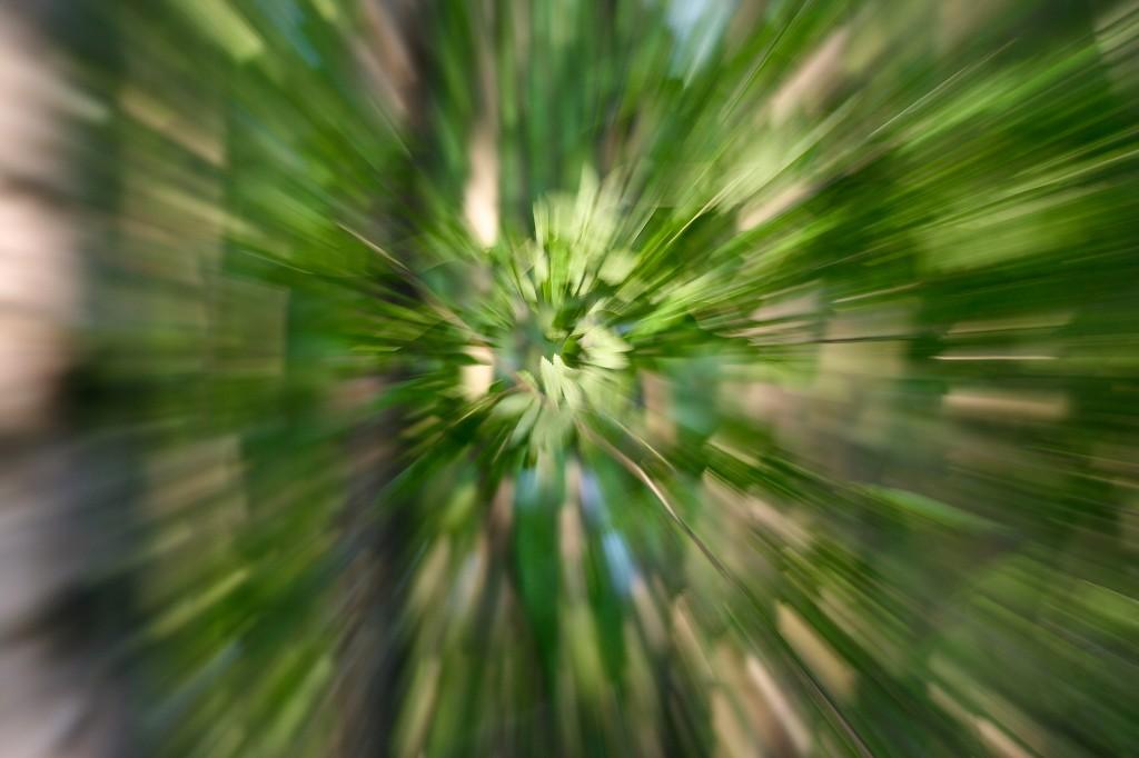 Kreativa bilder 2011-063